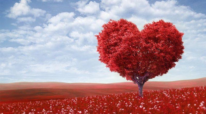 حکایت واقعی روز ولنتاین