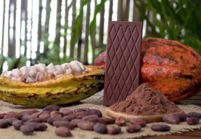 واردات پودر کاکائو از ترکیه+همراه آنالیز و نمونه
