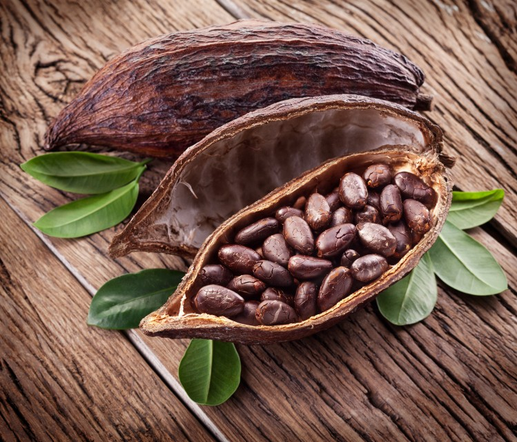 پودر و دانه کاکائو