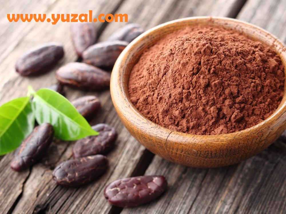 پودر کاکائو